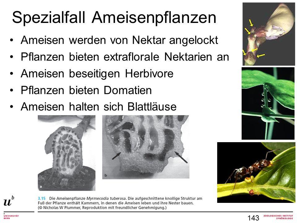 Spezialfall Ameisenpflanzen Ameisen werden von Nektar angelockt Pflanzen bieten extraflorale Nektarien an Ameisen beseitigen Herbivore Pflanzen bieten Domatien Ameisen halten sich Blattläuse 143