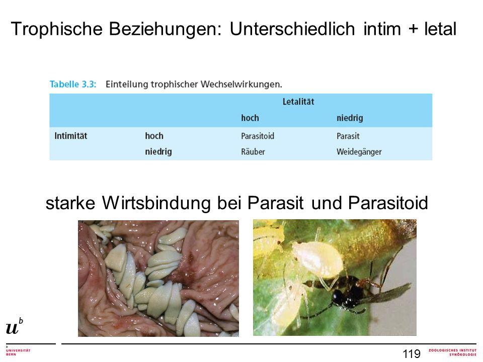 Trophische Beziehungen: Unterschiedlich intim + letal 119 starke Wirtsbindung bei Parasit und Parasitoid
