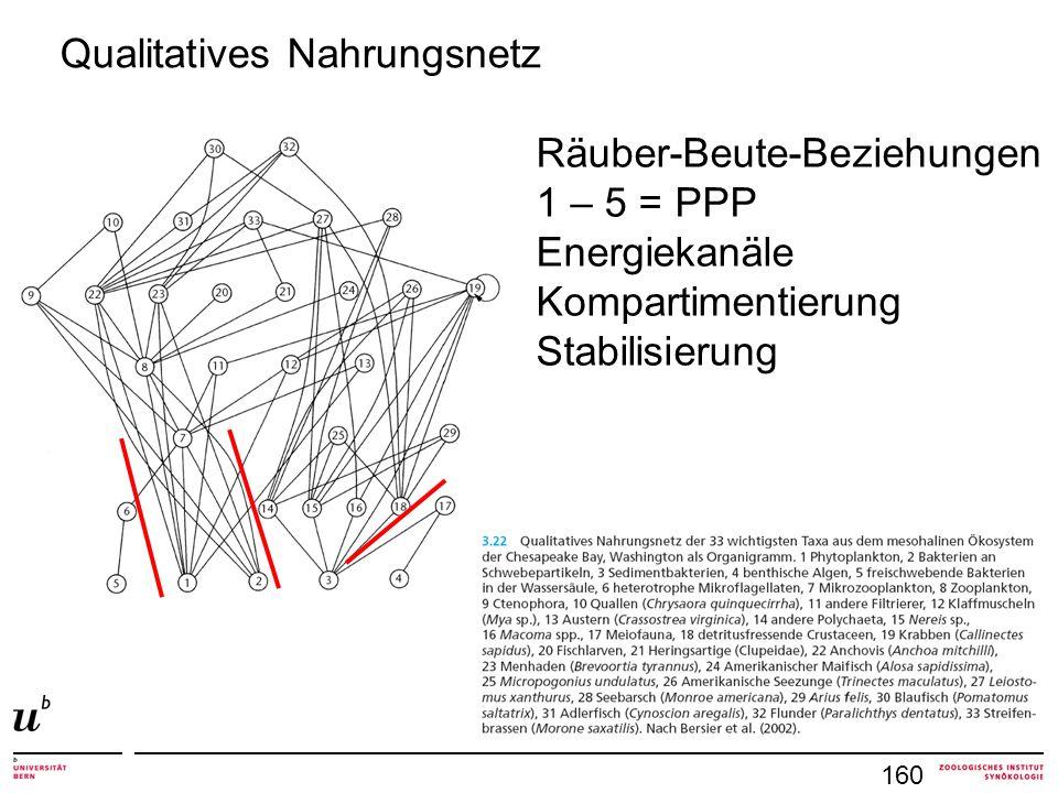 Qualitatives Nahrungsnetz Räuber-Beute-Beziehungen 1 – 5 = PPP Energiekanäle Kompartimentierung Stabilisierung 160