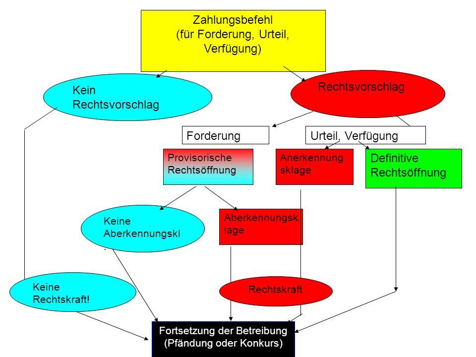 C.Überblick und Charakterisierung der Verfahren des SchKG I.