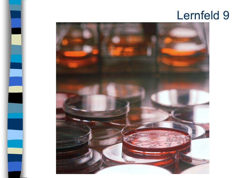 Lernfeld 9
