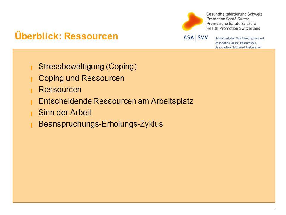 Überblick: Ressourcen Stressbewältigung (Coping) Coping und Ressourcen Ressourcen Entscheidende Ressourcen am Arbeitsplatz Sinn der Arbeit Beanspruchu