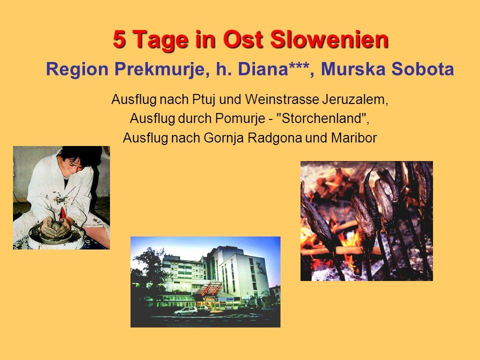 5 Tage in Ost Slowenien Region Prekmurje, h. Diana***, Murska Sobota Ausflug nach Ptuj und Weinstrasse Jeruzalem, Ausflug durch Pomurje -