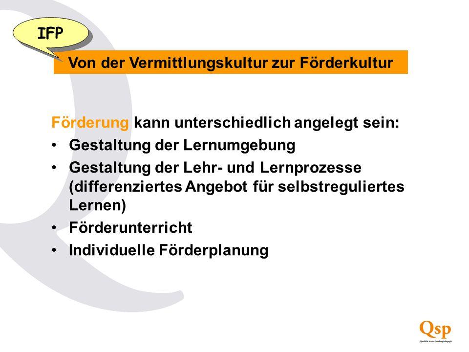 Was ist ein individueller Förderplan (IFP).