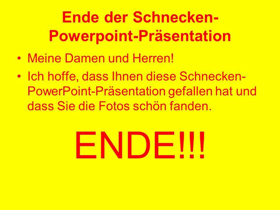 Ende der Schnecken- Powerpoint-Präsentation Meine Damen und Herren! Ich hoffe, dass Ihnen diese Schnecken- PowerPoint-Präsentation gefallen hat und da