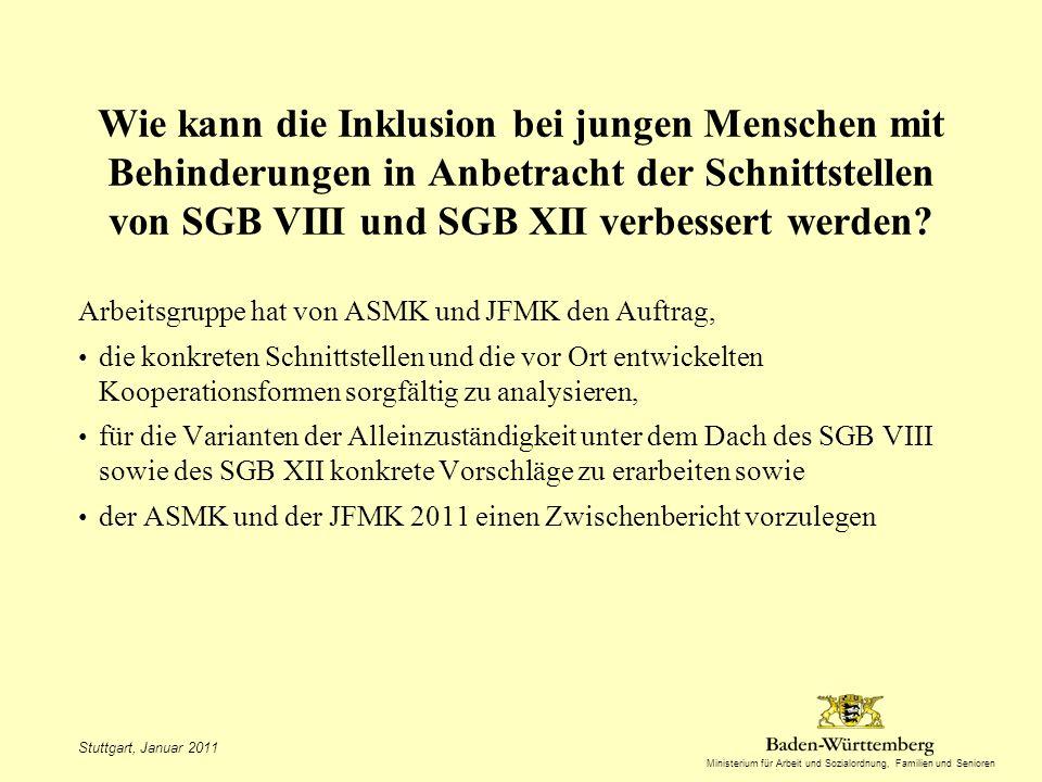 Ministerium für Arbeit und Sozialordnung, Familien und Senioren Wie kann die Inklusion bei jungen Menschen mit Behinderungen in Anbetracht der Schnittstellen von SGB VIII und SGB XII verbessert werden.