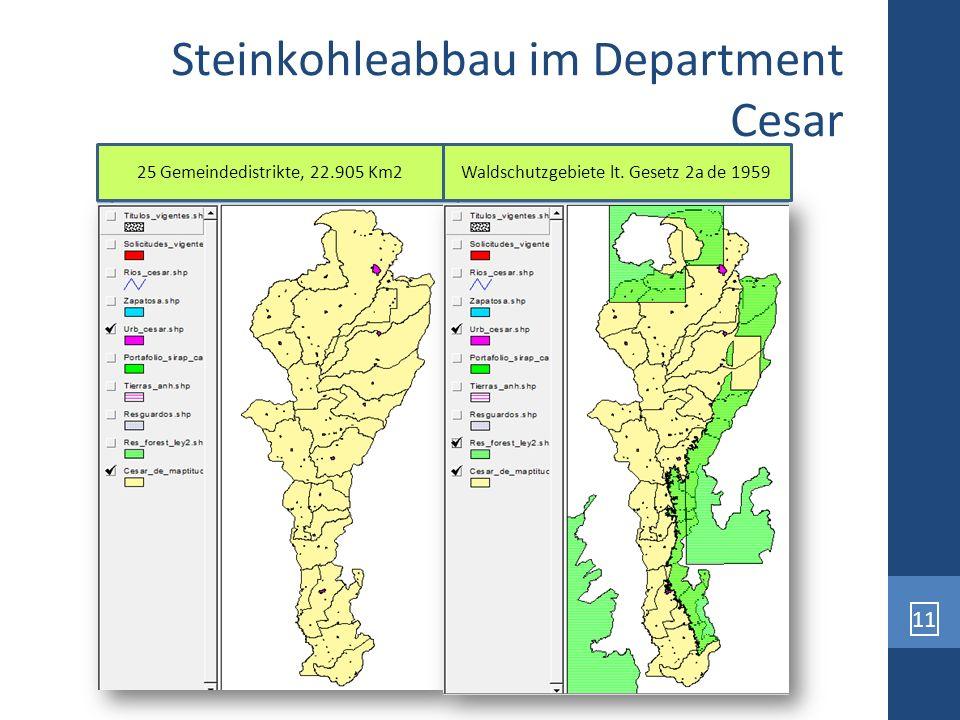 11 Steinkohleabbau im Department Cesar 25 Gemeindedistrikte, 22.905 Km2 Waldschutzgebiete lt. Gesetz 2a de 1959
