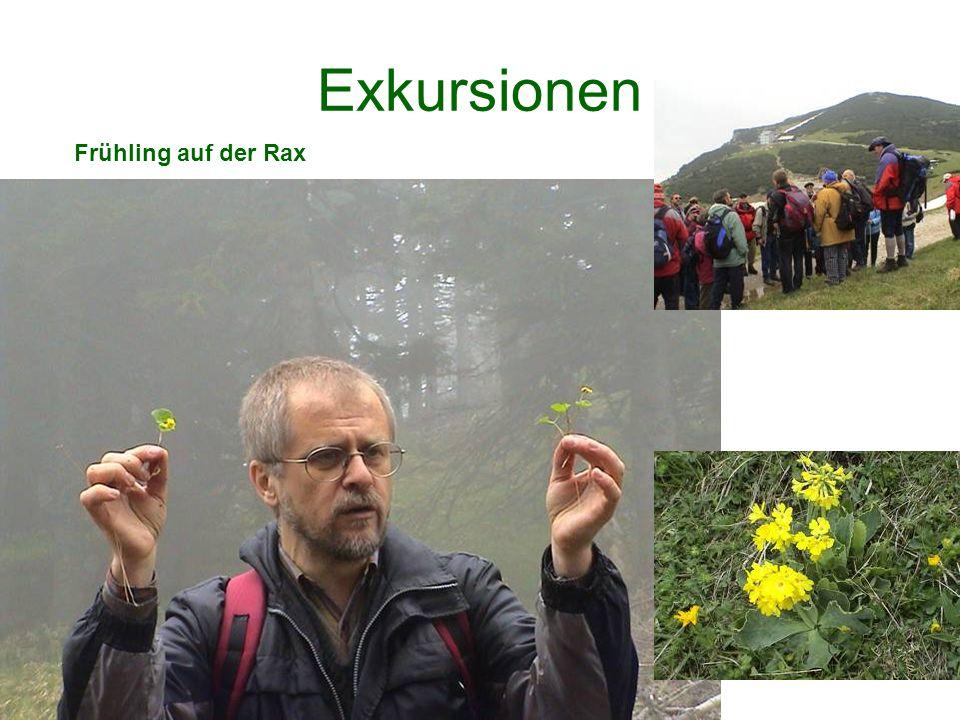 Exkursionen Frühling auf der Rax