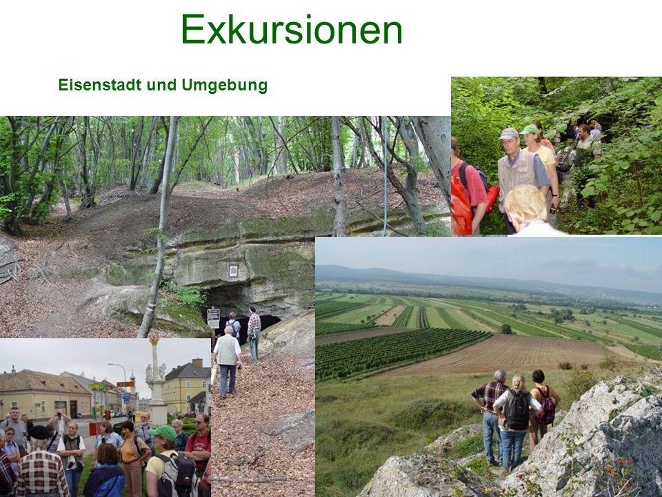 Exkursionen Eisenstadt und Umgebung