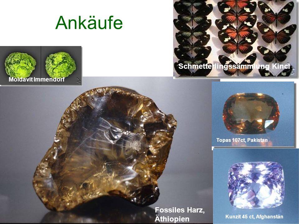 Ankäufe Schmetterlingssammlung Kincl Moldavit Immendorf Fossiles Harz, Äthiopien Topas 107ct, Pakistan Kunzit 45 ct, Afghanstan