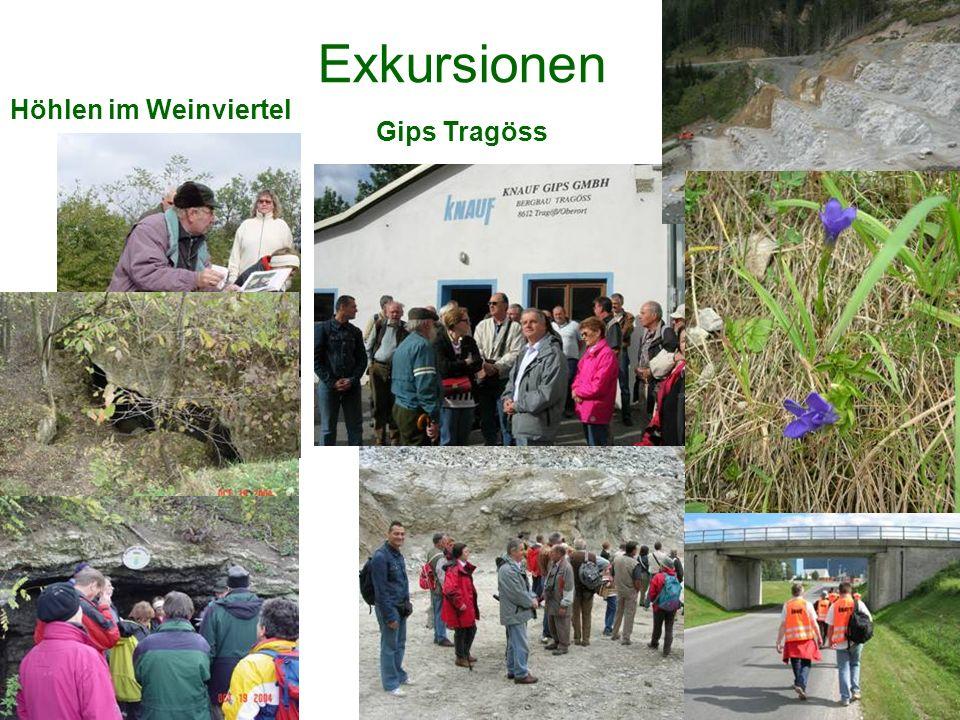 Exkursionen Höhlen im Weinviertel Gips Tragöss