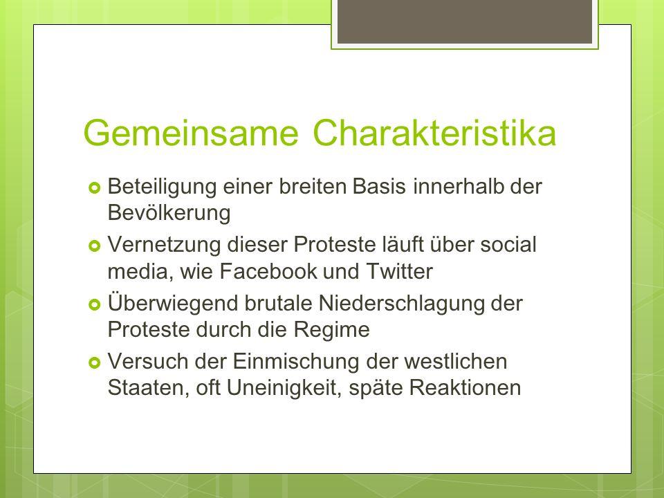 Gemeinsame Charakteristika Beteiligung einer breiten Basis innerhalb der Bevölkerung Vernetzung dieser Proteste läuft über social media, wie Facebook