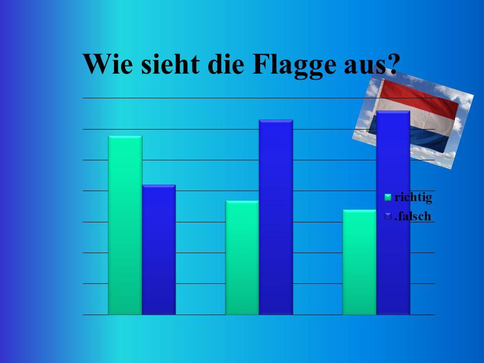 Wie sieht die Flagge aus