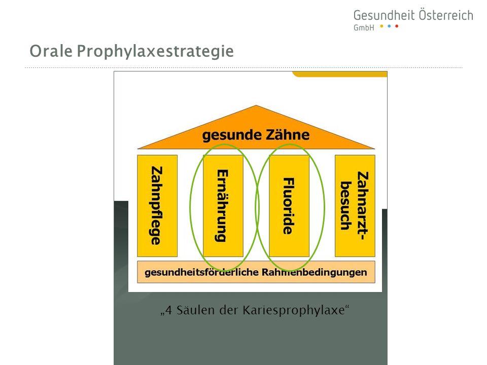 Orale Prophylaxestrategie 4 Säulen der Kariesprophylaxe