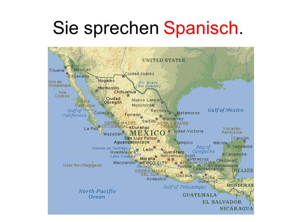 Sie sprechen Spanisch.