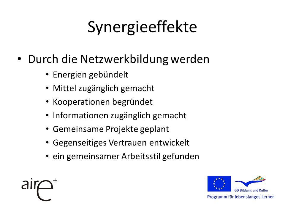 Synergieeffekte Durch die Netzwerkbildung werden Energien gebündelt Mittel zugänglich gemacht Kooperationen begründet Informationen zugänglich gemacht Gemeinsame Projekte geplant Gegenseitiges Vertrauen entwickelt ein gemeinsamer Arbeitsstil gefunden