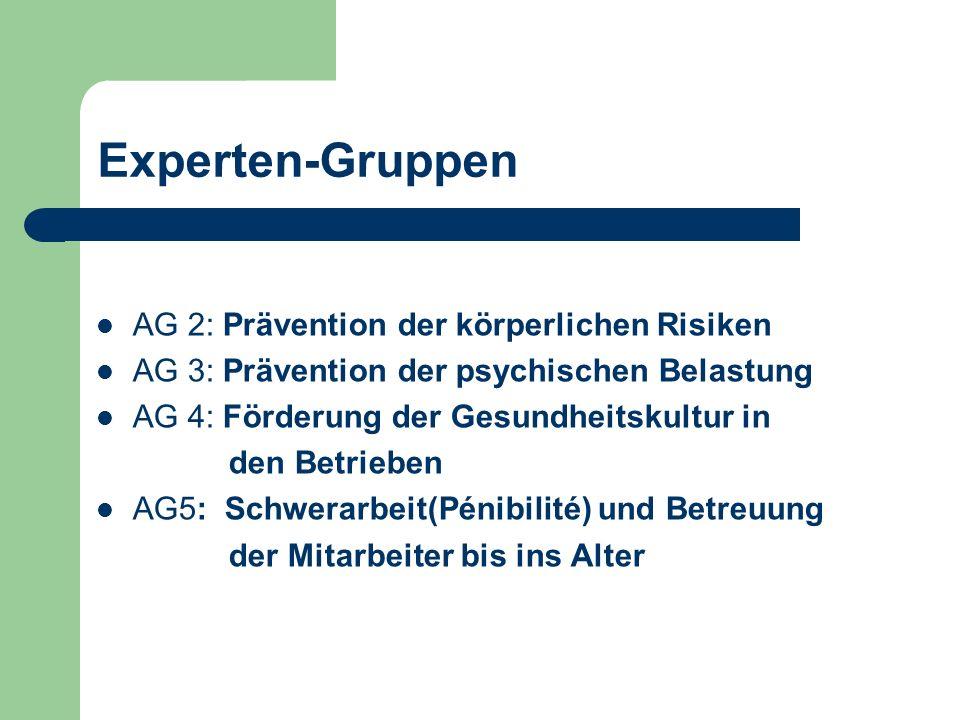 Experten-Gruppen AG 2: Prävention der körperlichen Risiken AG 3: Prävention der psychischen Belastung AG 4: Förderung der Gesundheitskultur in den Betrieben AG5: Schwerarbeit(Pénibilité) und Betreuung der Mitarbeiter bis ins Alter