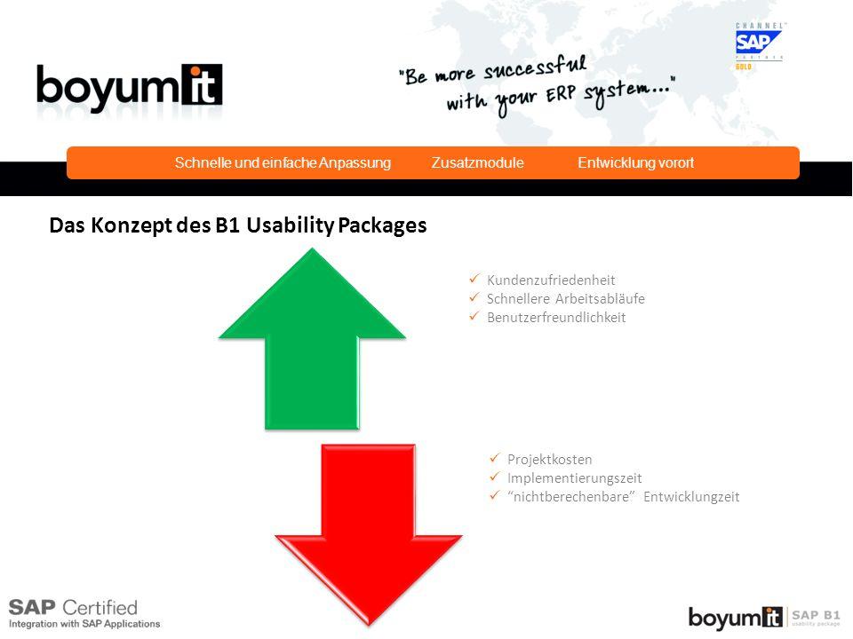 Kundenzufriedenheit Schnellere Arbeitsabläufe Benutzerfreundlichkeit Projektkosten Implementierungszeit nichtberechenbare Entwicklungzeit Das Konzept des B1 Usability Packages Schnelle und einfache Anpassung Zusatzmodule Entwicklung vorort