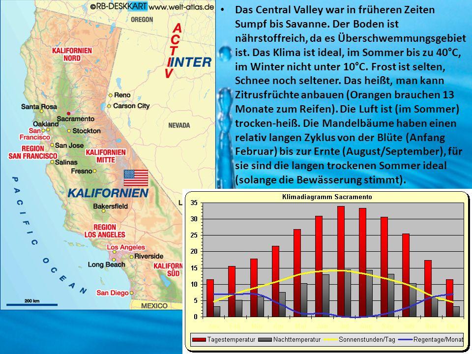 Das Central Valley war in früheren Zeiten Sumpf bis Savanne. Der Boden ist nährstoffreich, da es Überschwemmungsgebiet ist. Das Klima ist ideal, im So
