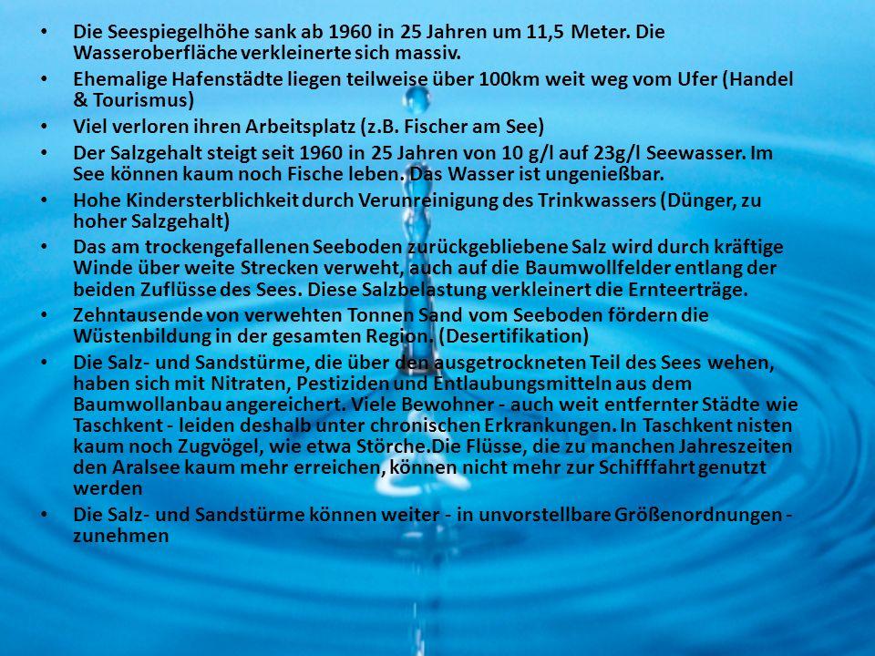 Die Seespiegelhöhe sank ab 1960 in 25 Jahren um 11,5 Meter. Die Wasseroberfläche verkleinerte sich massiv. Ehemalige Hafenstädte liegen teilweise über