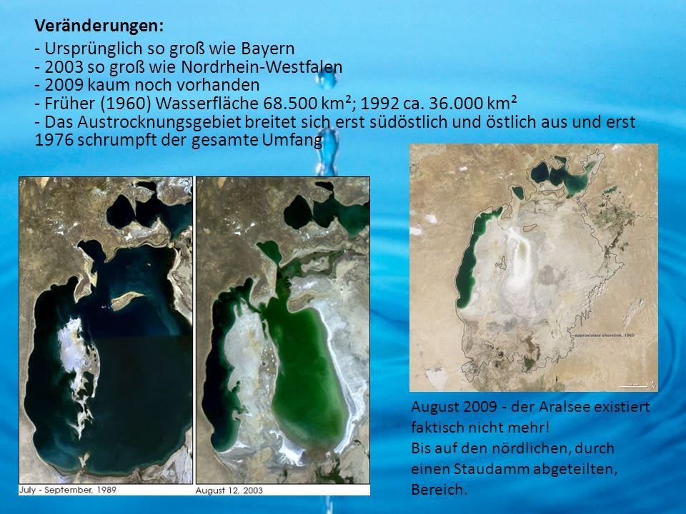 Veränderungen: - Ursprünglich so groß wie Bayern - 2003 so groß wie Nordrhein-Westfalen - 2009 kaum noch vorhanden - Früher (1960) Wasserfläche 68.500