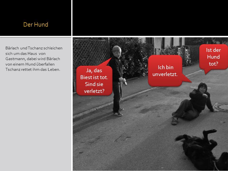Der Hund Bärlach und Tschanz schleichen sich um das Haus von Gastmann, dabei wird Bärlach von einem Hund überfallen Tschanz rettet ihm das Leben. Ist