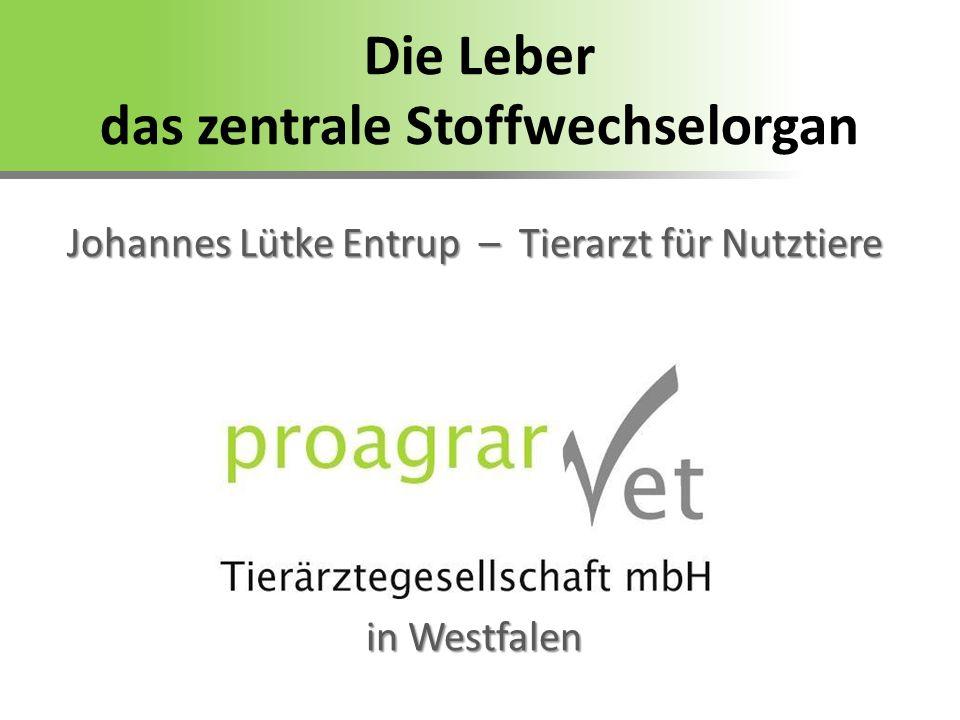 Die Leber das zentrale Stoffwechselorgan Johannes Lütke Entrup – Tierarzt für Nutztiere in Westfalen