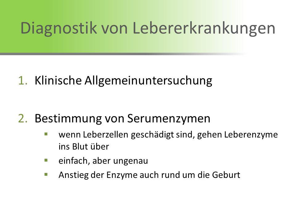 Diagnostik von Lebererkrankungen 1.Klinische Allgemeinuntersuchung 2.Bestimmung von Serumenzymen wenn Leberzellen geschädigt sind, gehen Leberenzyme i