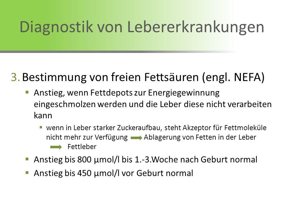 Diagnostik von Lebererkrankungen 3.Bestimmung von freien Fettsäuren (engl. NEFA) Anstieg, wenn Fettdepots zur Energiegewinnung eingeschmolzen werden u