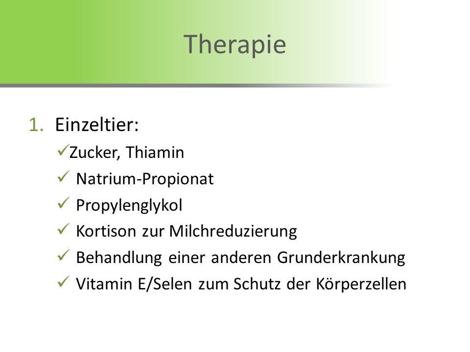 1.Einzeltier: Zucker, Thiamin Natrium-Propionat Propylenglykol Kortison zur Milchreduzierung Behandlung einer anderen Grunderkrankung Vitamin E/Selen