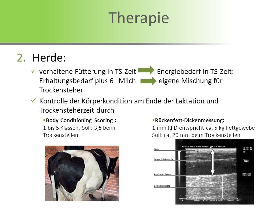 Body Conditioning Scoring : 1 bis 5 Klassen, Soll: 3,5 beim Trockenstellen Rückenfett-Dickenmessung: 1 mm RFD entspricht ca. 5 kg Fettgewebe Soll: ca.