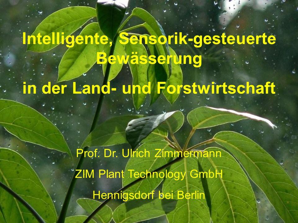 Intelligente, Sensorik-gesteuerte Bewässerung in der Land- und Forstwirtschaft Prof.