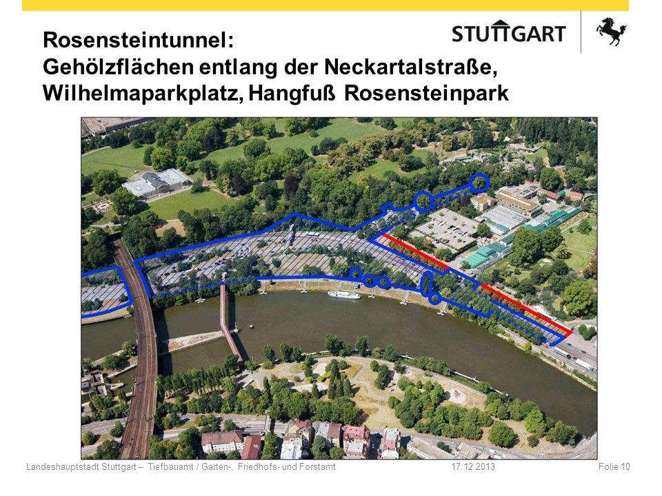 Rosensteintunnel: Gehölzflächen entlang der Neckartalstraße, Wilhelmaparkplatz, Hangfuß Rosensteinpark 17.12.2013Folie 10Landeshauptstadt Stuttgart –