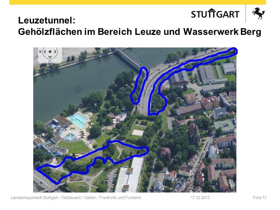 Leuzetunnel: Gehölzflächen im Bereich Leuze und Wasserwerk Berg 17.12.2013Folie 11Landeshauptstadt Stuttgart – Tiefbauamt / Garten-, Friedhofs- und Fo
