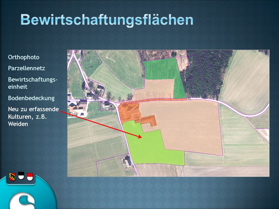 Orthophoto Parzellennetz Bewirtschaftungs- einheit Bodenbedeckung Neu zu erfassende Kulturen, z.B. Weiden