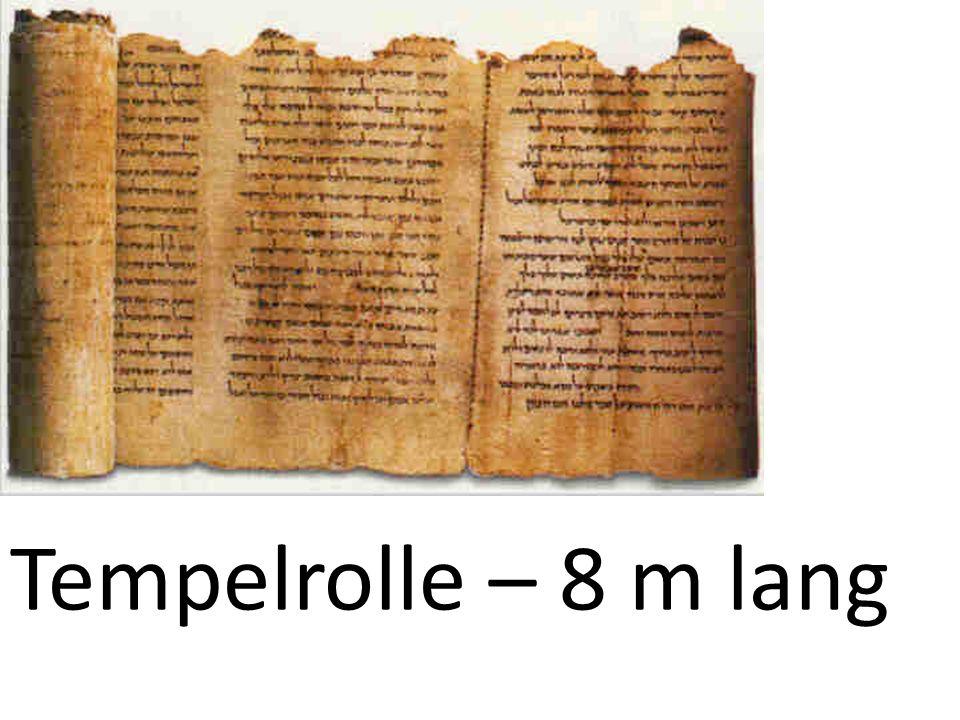 Tempelrolle – 8 m lang