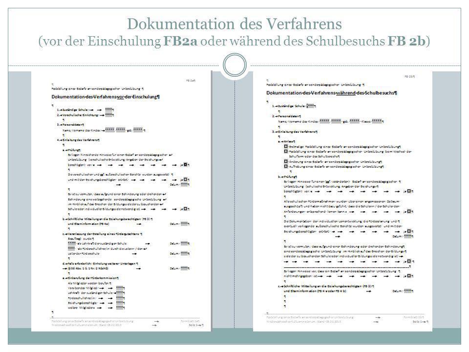 Dokumentation des Verfahrens (vor der Einschulung FB2a oder während des Schulbesuchs FB 2b)