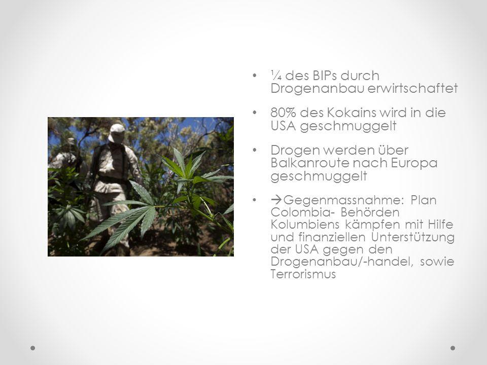 ¼ des BIPs durch Drogenanbau erwirtschaftet 80% des Kokains wird in die USA geschmuggelt Drogen werden über Balkanroute nach Europa geschmuggelt Gegen