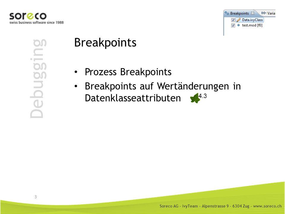 Soreco AG - ivyTeam – Alpenstrasse 9 – 6304 Zug – www.soreco.ch Debugging Breakpoints Prozess Breakpoints Breakpoints auf Wertänderungen in Datenklass