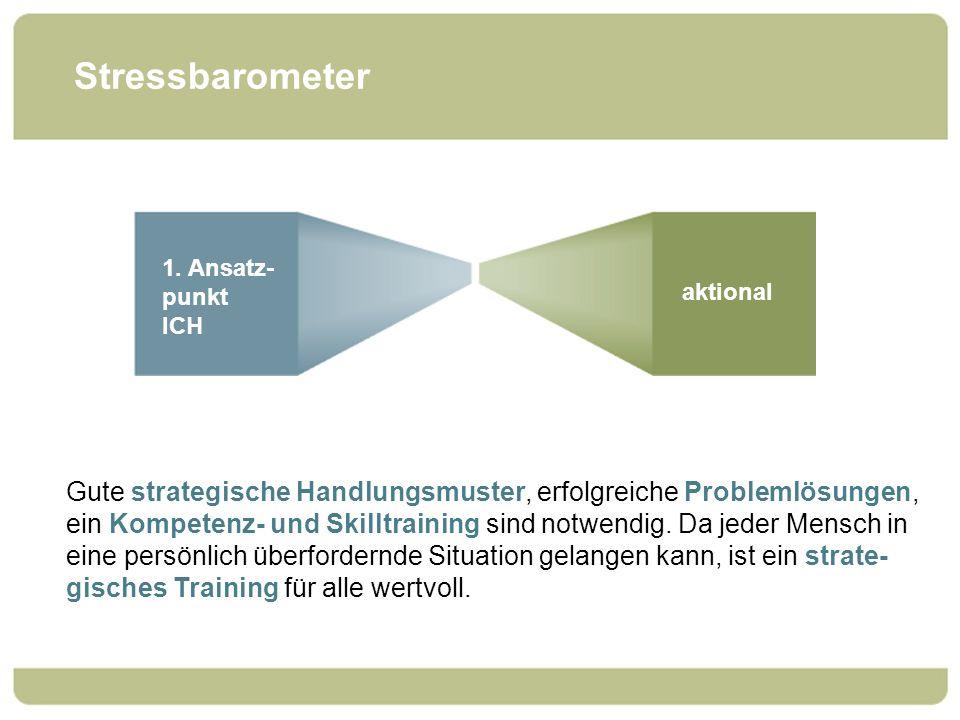 Stressbarometer 1. Ansatz- punkt ICH aktional Gute strategische Handlungsmuster, erfolgreiche Problemlösungen, ein Kompetenz- und Skilltraining sind n