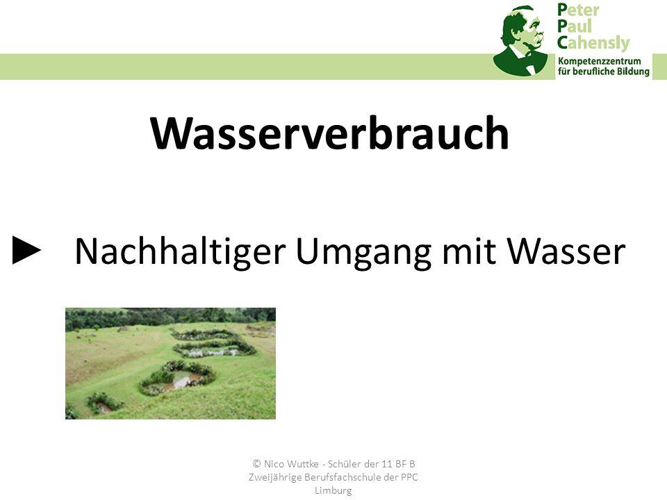 Nachhaltiger Umgang mit Wasser Wasserverbrauch © Nico Wuttke - Schüler der 11 BF B Zweijährige Berufsfachschule der PPC Limburg