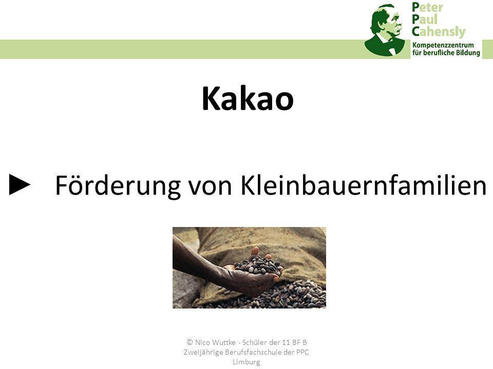 Förderung von Kleinbauernfamilien Kakao © Nico Wuttke - Schüler der 11 BF B Zweijährige Berufsfachschule der PPC Limburg
