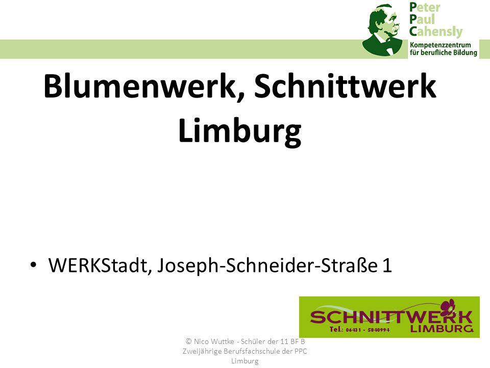 Blumenwerk, Schnittwerk Limburg WERKStadt, Joseph-Schneider-Straße 1 © Nico Wuttke - Schüler der 11 BF B Zweijährige Berufsfachschule der PPC Limburg