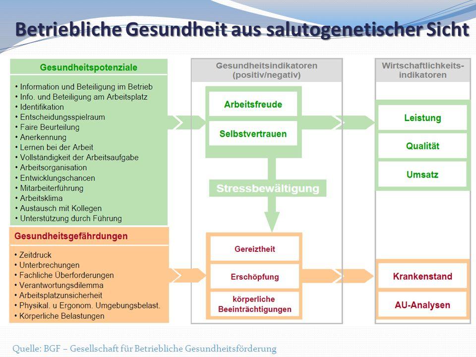Betriebliche Gesundheit aus salutogenetischer Sicht Quelle: BGF – Gesellschaft für Betriebliche Gesundheitsförderung