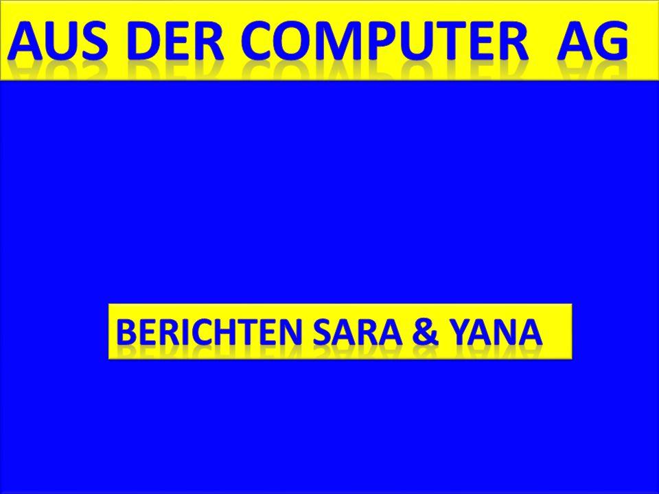 Seit Anfang des Schuljahres sind wir in der Computer- AG.