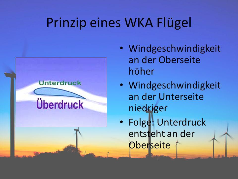 Prinzip eines WKA Flügel Windgeschwindigkeit an der Oberseite höher Windgeschwindigkeit an der Unterseite niedriger Folge: Unterdruck entsteht an der