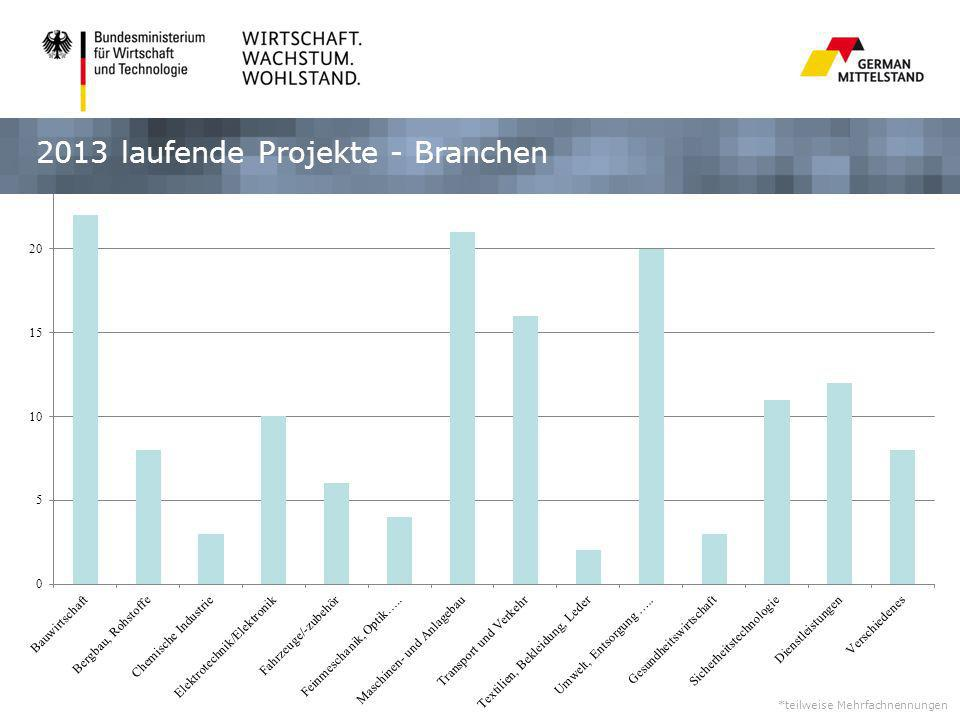 2013 laufende Projekte - Branchen *teilweise Mehrfachnennungen