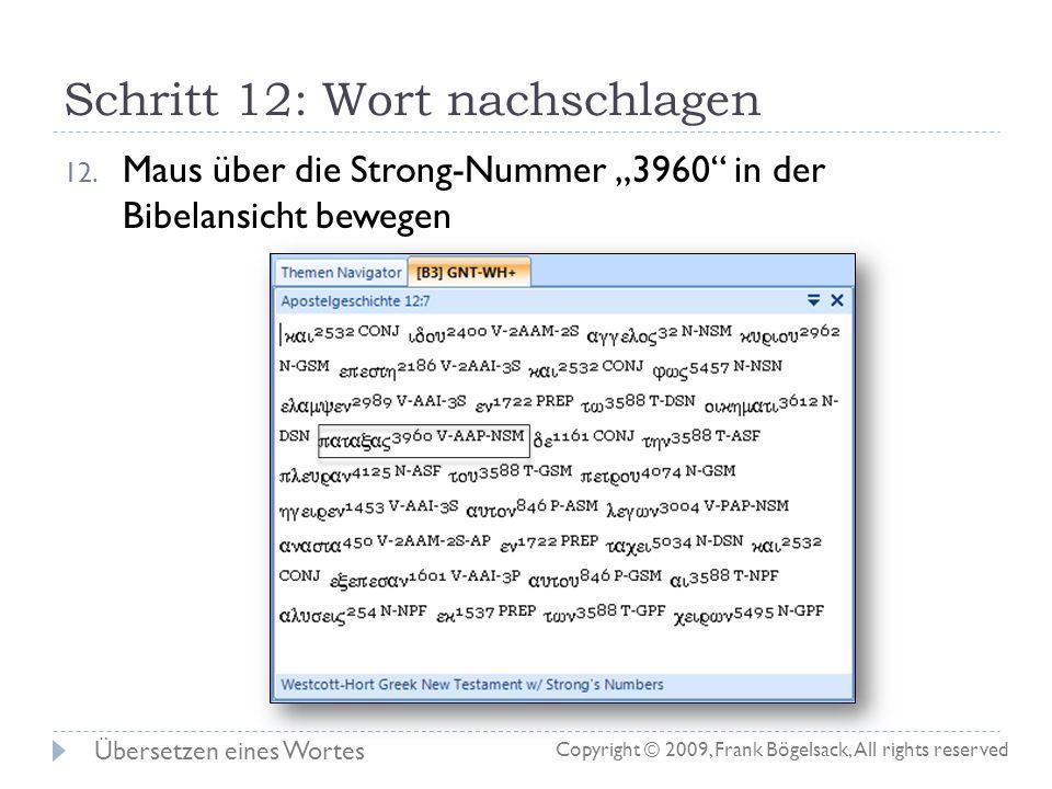 Schritt 11: Wörterbuch einrichten 11. Die fertig konfigurierte Wörterbuchansicht: Übersetzen eines Wortes Copyright © 2009, Frank Bögelsack, All right