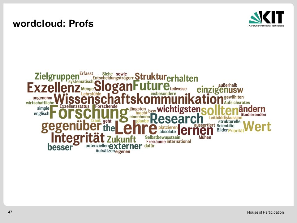 House of Participation 47 wordcloud: Profs
