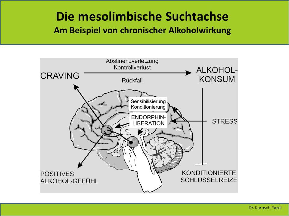 Dr. Kurosch Yazdi Die mesolimbische Suchtachse Am Beispiel von chronischer Alkoholwirkung